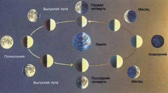Луна - спутник Земли..